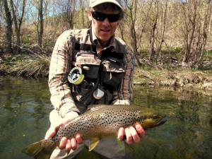 A brown trout fished with a dry fly