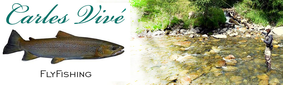 Fly fishing guide services in the best trout rivers of Catalonia. Trout fishing all year. Big browns and rainbows.