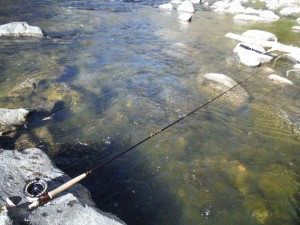 "The Orvis Access 10"" fly rod"