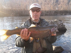 A large and fat rainbow fished with a phaisant tail