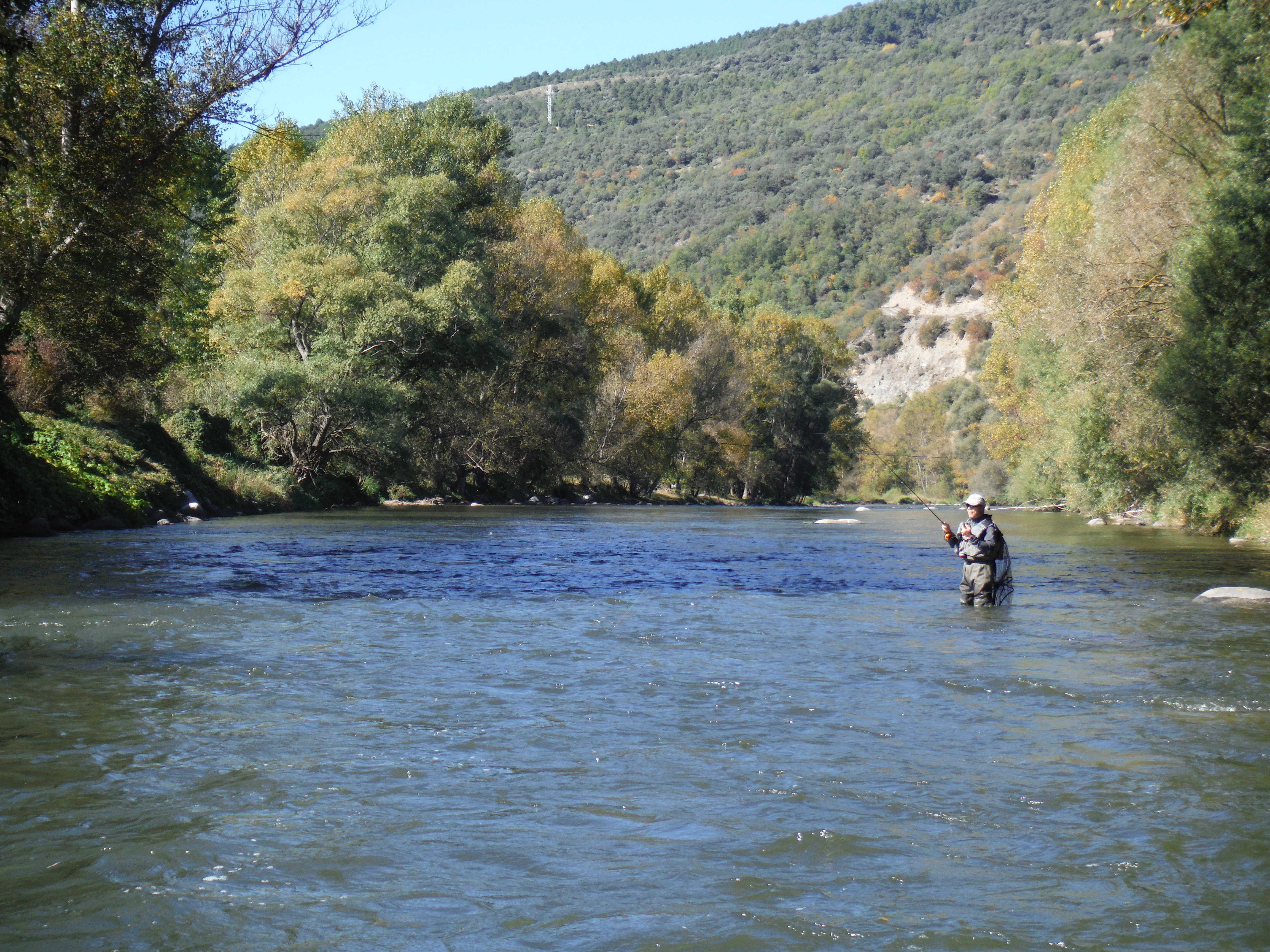 Carles viv fly fishing guide pyrenees top river for Best fly fishing