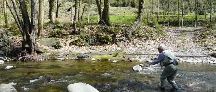 FISHING CATALONIAN MOUNTAIN TORRENTS